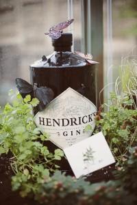 Hendricks Bottle Shots (6)