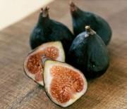 aphrodisiacs-figs-06-sl