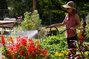 TLAW- Farm to Table Garden- Tending the Garden- Andrea Killam Photography