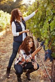 The McBride Sisters: A Dynamic Winemaking Duo!