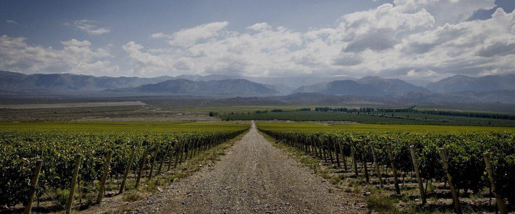 Graffigna Winery