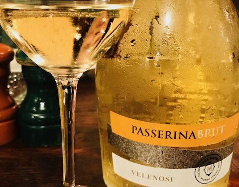 A True Taste of Marche, Italy with Velenosi Wines!
